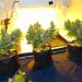 cfl marijuana grow